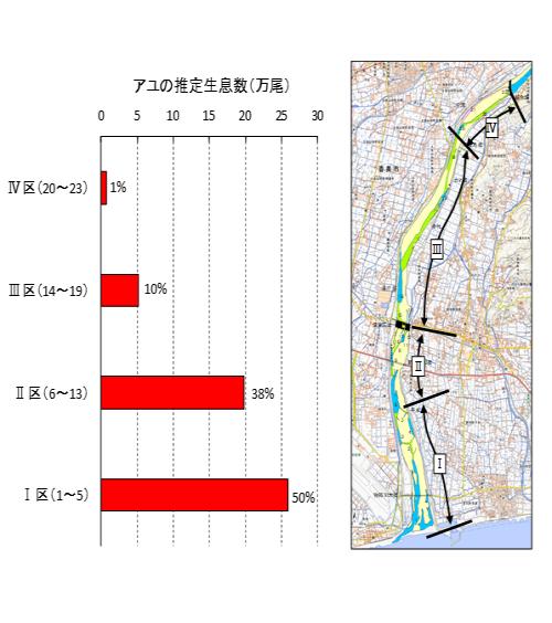 2020.4.22アユ生息状況 図2.png