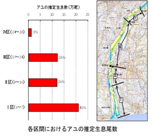 各区間におけるアユの推定生息尾数.png