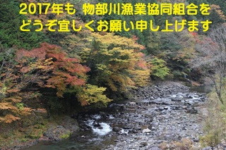 IMG_8851 - コピー (2).JPG
